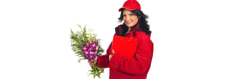 livrer orchidees a domicile