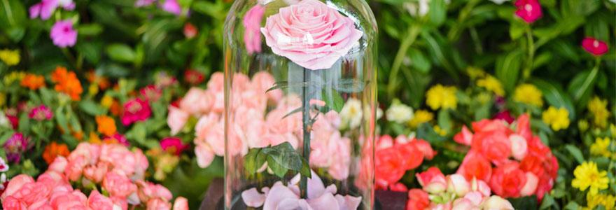 Parfait compromis entre des roses fraîches et une plante synthétique, la fleur éternelle est une très belle idée cadeau à offrir pour symboliser votre attachement.